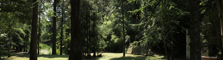 La Foresta </br> l'evento speciale che chiude il 38/o Valdarno Jazz Summer